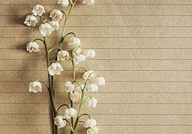唯美漂亮的花束背景高清图