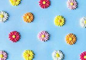 手机壳DIY配件树脂小雏菊