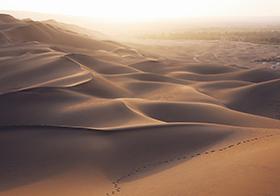 金色沙漠风景高清图