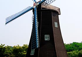荷兰风车封面高清图