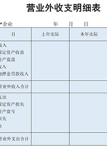 公司财务营业外收支明细表