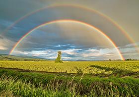 絢麗雙彩虹高清圖