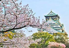 浪漫东京樱花封面高清图
