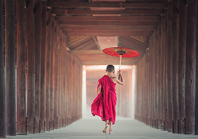 举着油纸伞的小和尚高清图