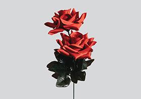 浪漫紅玫瑰背景高清圖