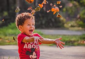 在草坪上落葉的小男孩高清圖