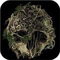 森林最新手机版