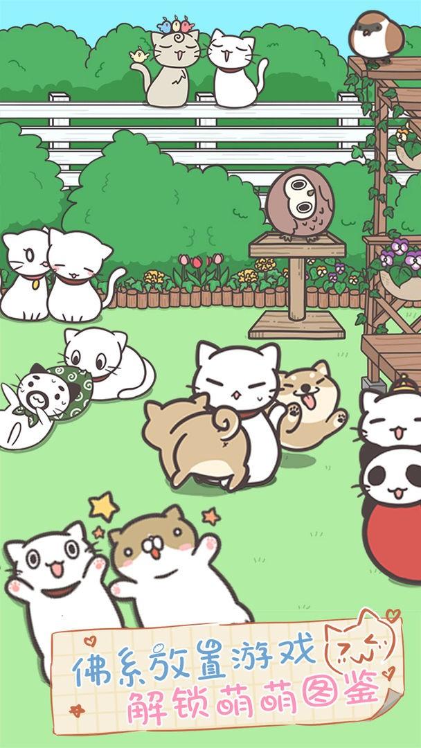猫咪饲养日常中文下载